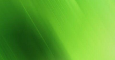 Yeşil rengin insan üzerindeki etkileri, psikolojik anlamı, özellikleri!